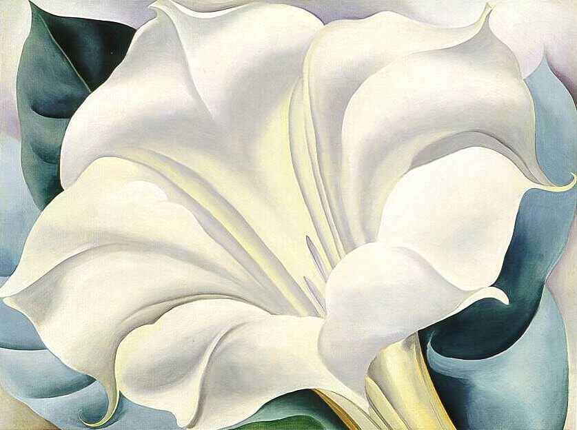The white flower 1932 by georgia okeeffe mightylinksfo
