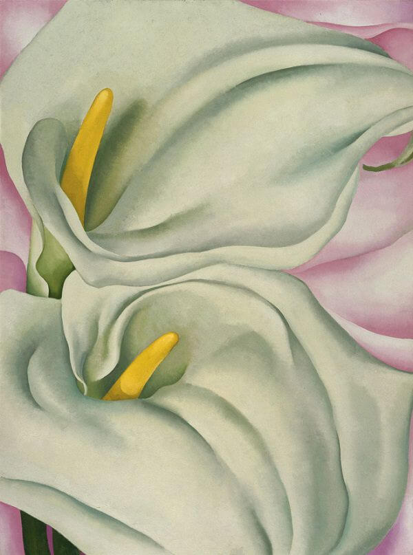 Two calla lilies on pink 1928 by georgia okeeffe mightylinksfo